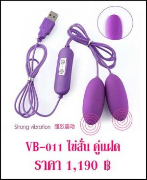 ไข่สั่น VB-011