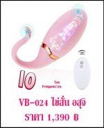 ไข่สั่น vb-024